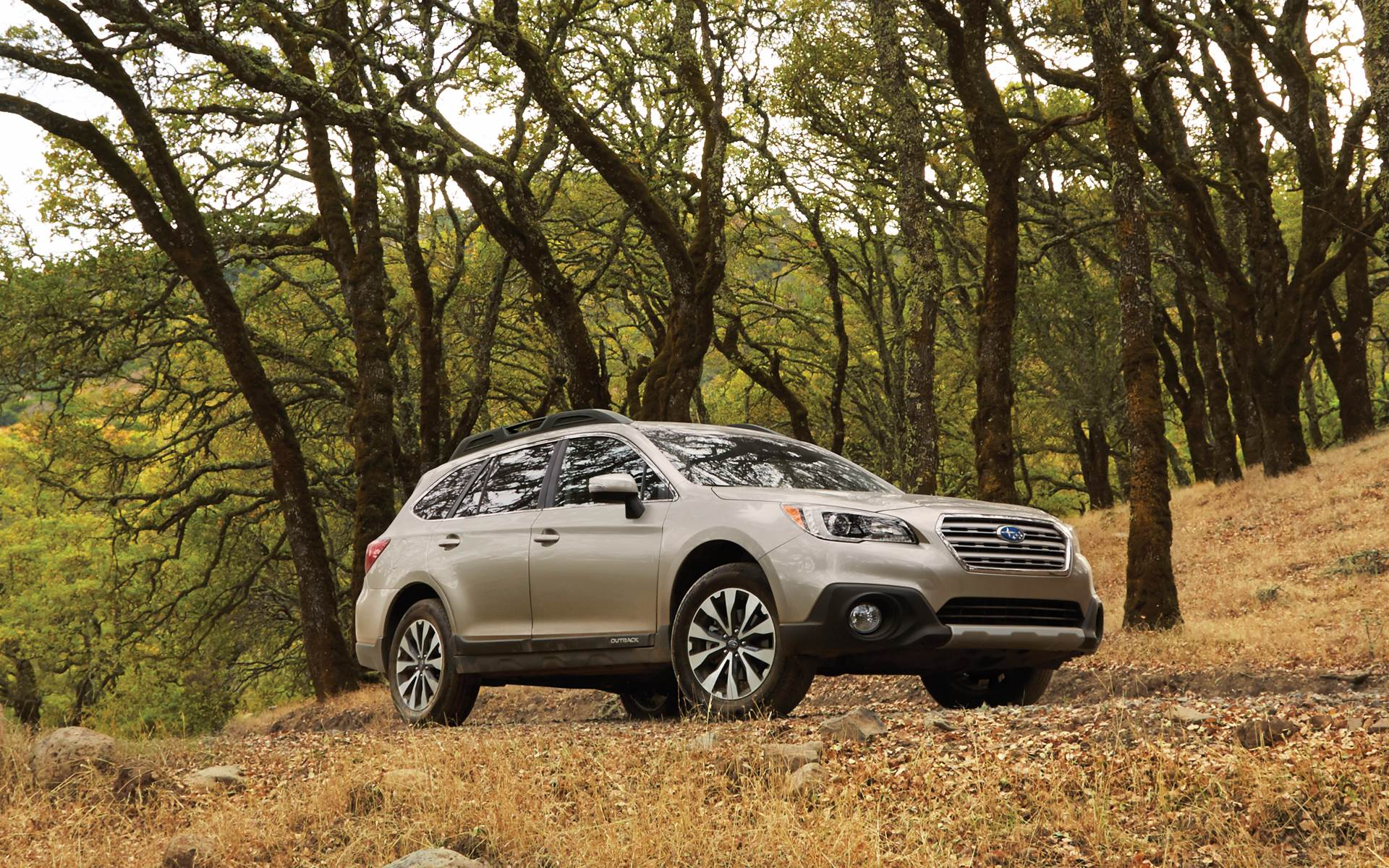 2017 Subaru Outback Limited Green 4k Hd Wallpapers Turbo Used For Sale Near West Chester Pa Exton Buy