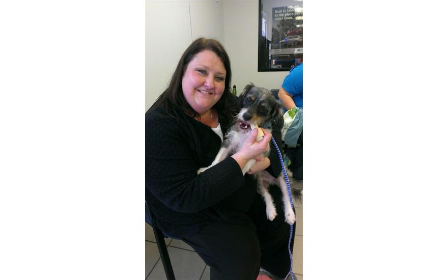Sterling Subaru Hosts An Adoption Event With Aggieland Humane Society