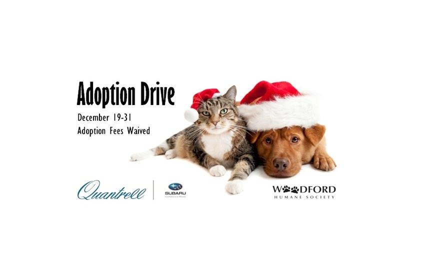 Quantrell Subaru Sponsored Adoption Fees For Woodford Humane Society