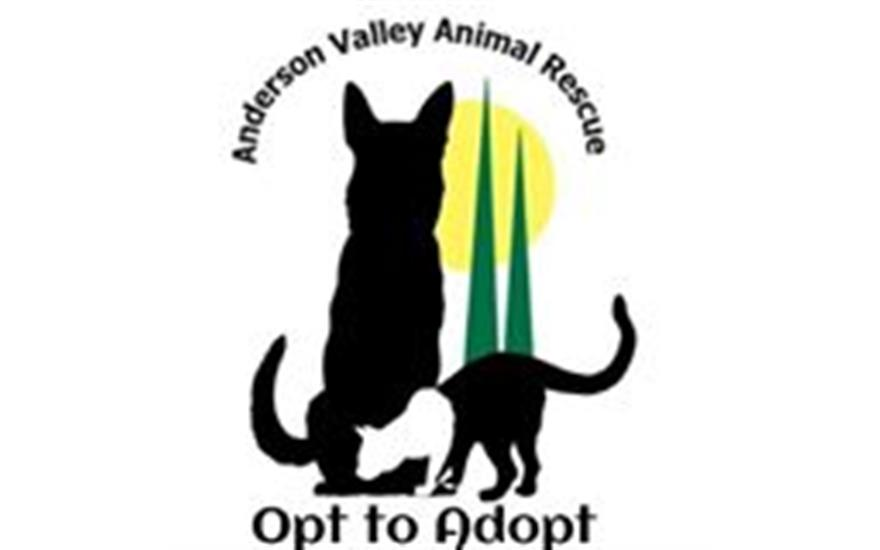 Ken Fowler Subaru supports Anderson Valley Animal Rescue