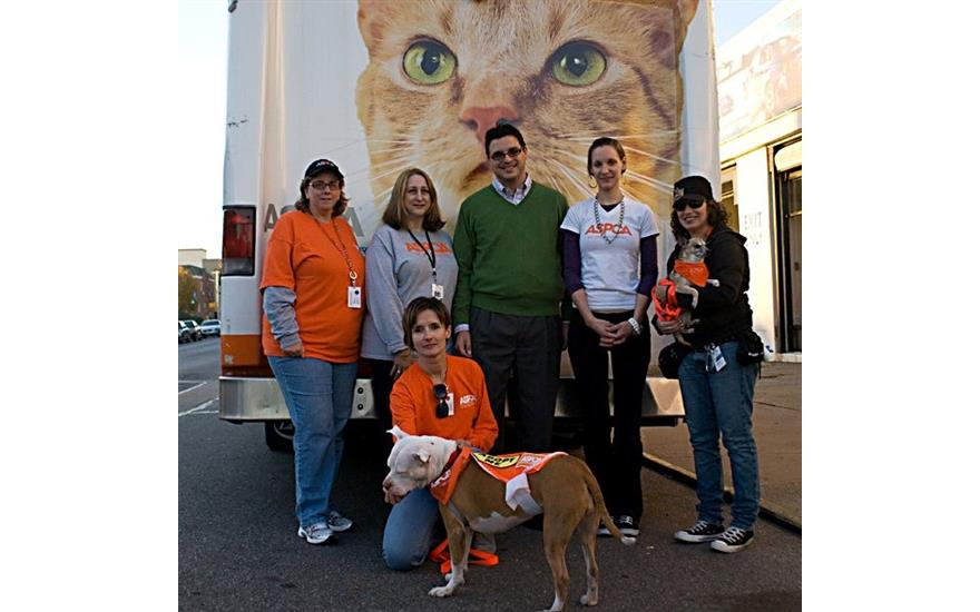 Pet Adoption Drive: Bay Ridge Subaru