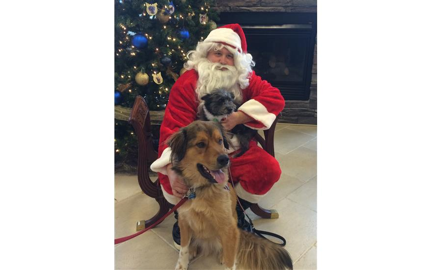 Pet Photos with Santa CAP Fundraiser