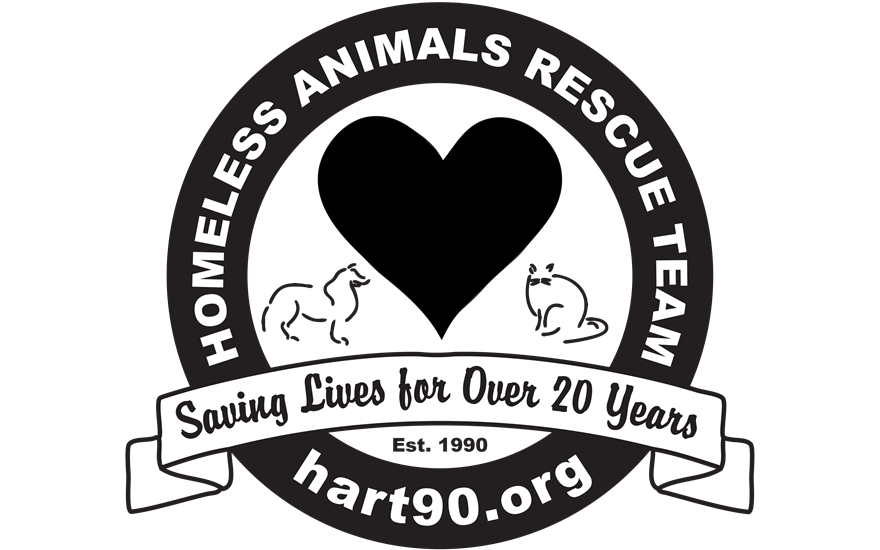 Homless Animals Rescue Team