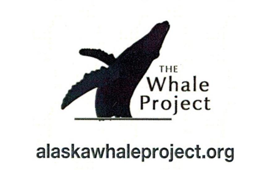 The Whale Project