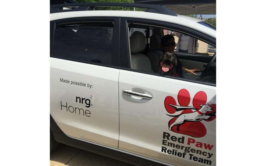 Disaster Response Vehicle for Displaced Pets