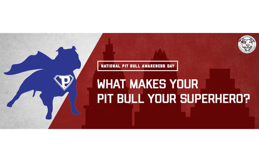 My Pit Bull is My Superhero!