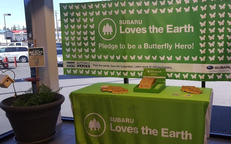Butterly Heroes!!