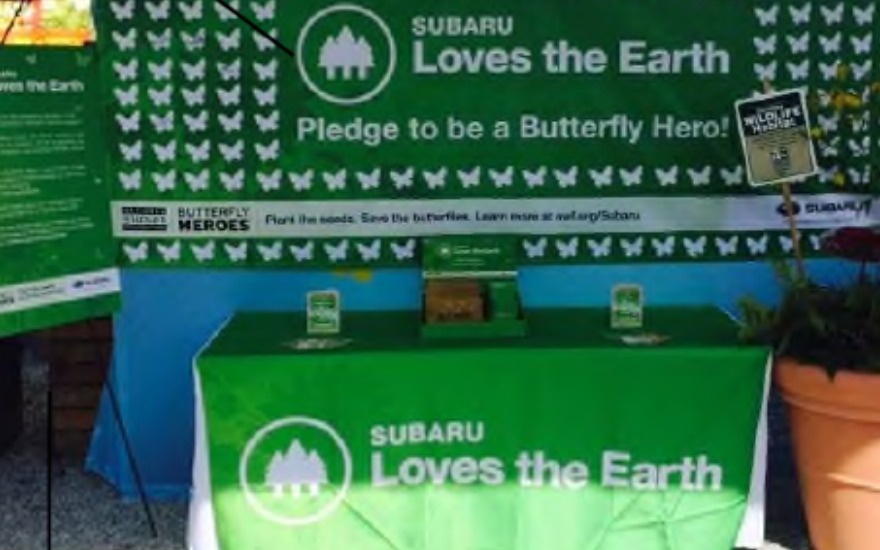 Doing Our Part to Save the Butterflies - Hanlees Subaru