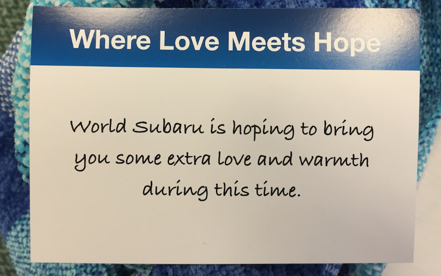 World Subaru Loves to Care Event