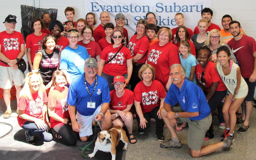 Dog Wash at Evanston Subaru with C.A.R.E.