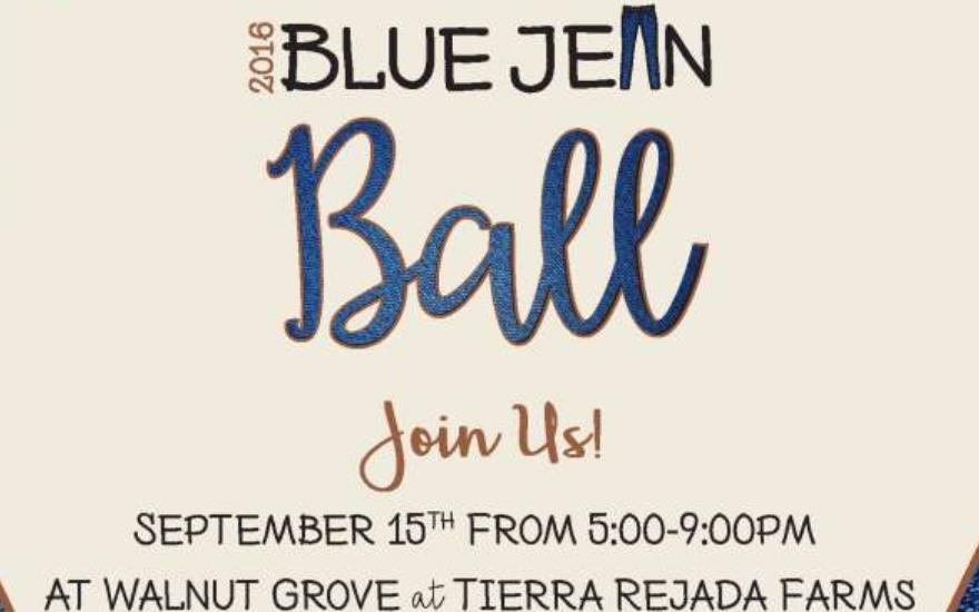 Blue Jean Ball-Subaru Loves to Help