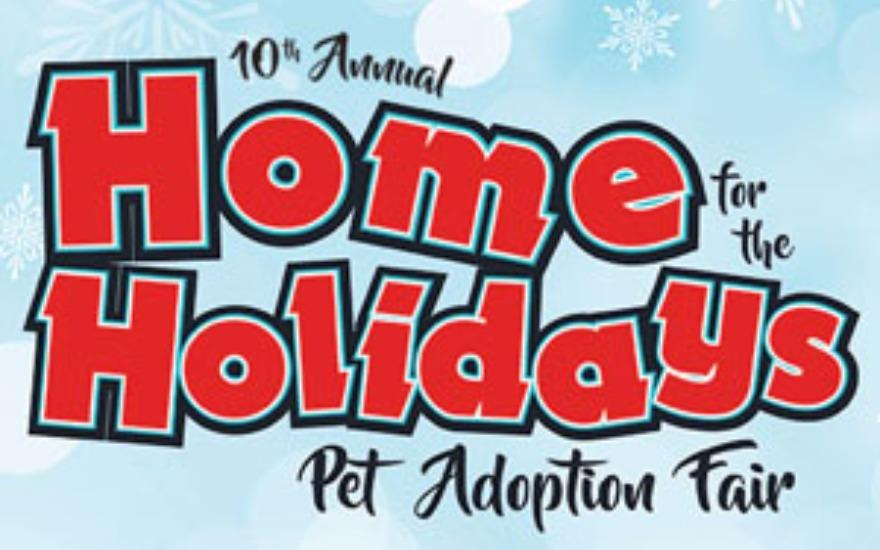 Irvine Subaru & the Home for the Holidays Pet Fair