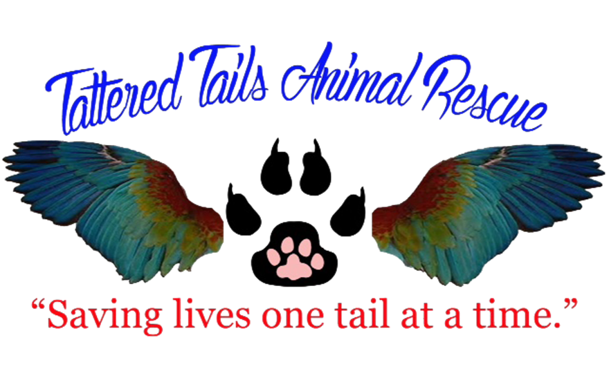 Tattered Tails Animal Rescue, Inc.