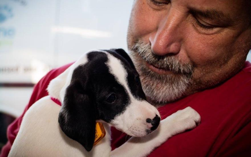 Subaru Finds Homes for Over 25 Homeless Animals