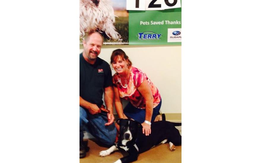 Terry Subaru a hero to Lynchburg's adoptable pets