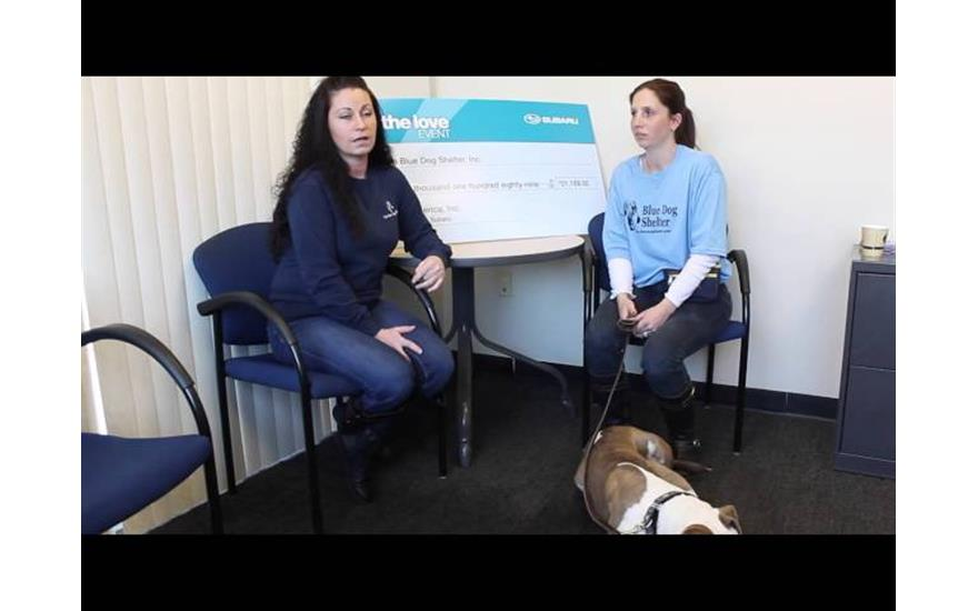 Sharing the Love with Blue Dog Shelter