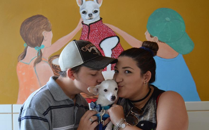 Special Love for the Special Needs Animals at CAP!