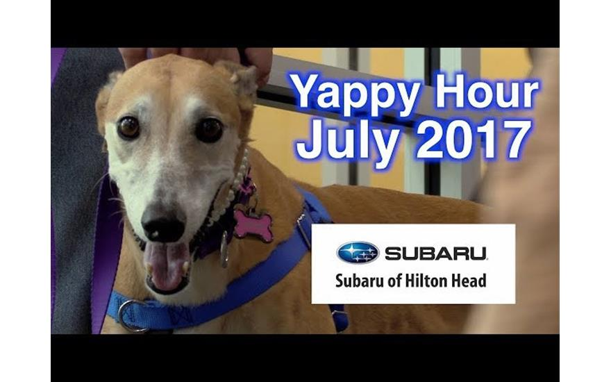 Jasper Animal Rescue Mission + Subaru Hilton Head