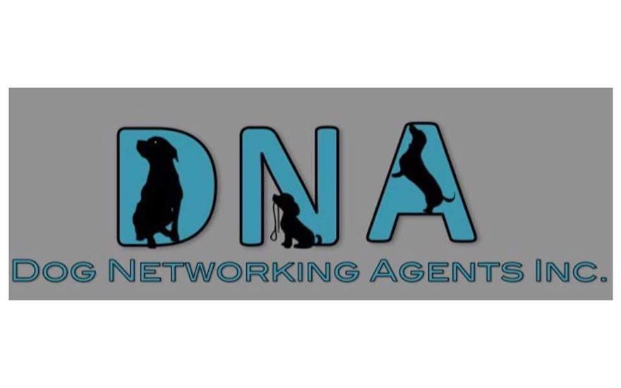 Dog Networking Agents