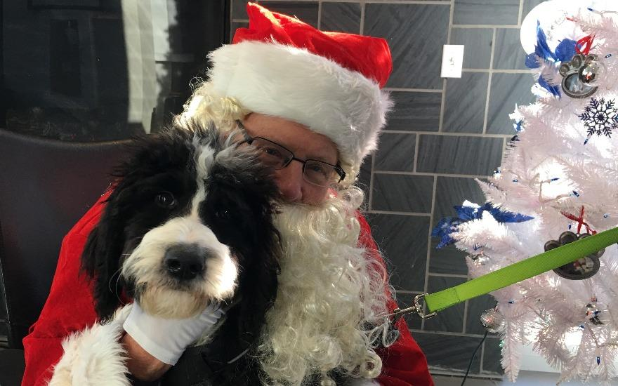 PET PHOTOS W/ SANTA - BENEFIT FOR ANIMAL FRIENDS!