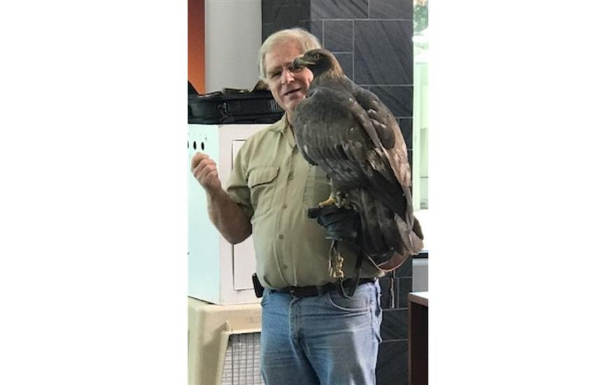 Southwest Wildlife Foundation Birds of Prey Show