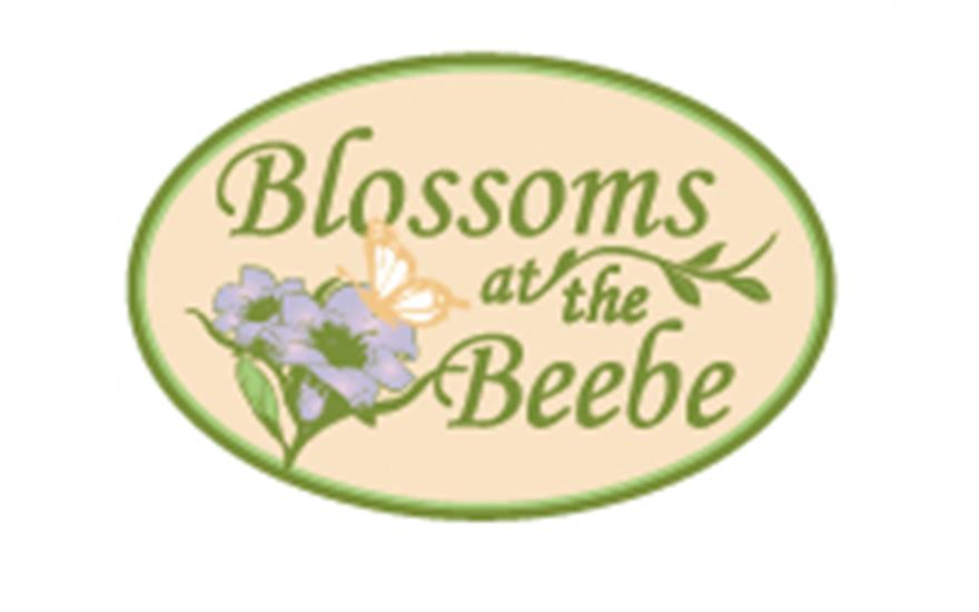 Blossoms at the Beebe