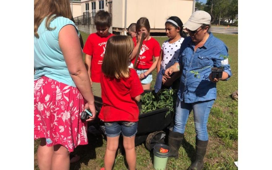 Organic Garden for local Elementary School