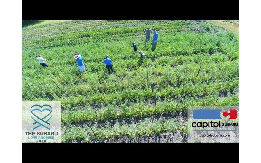 Capitol Subaru Supports Marion County Youth Garden
