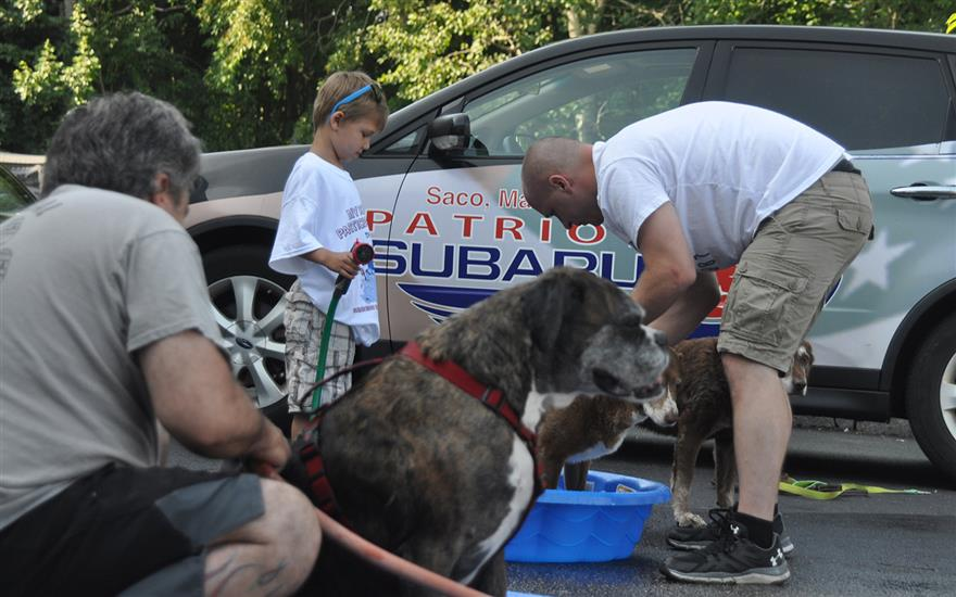 Helping To Set A Dog Washing World Record