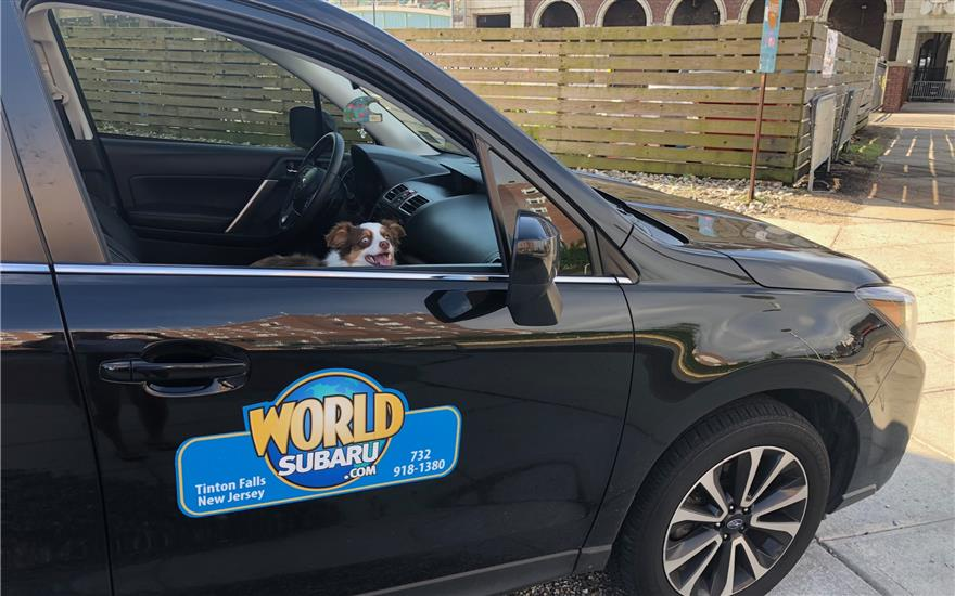 World Subaru Supports Clean Ocean Action