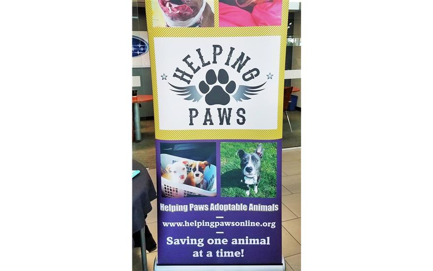 Subaru Pet Adoption Event