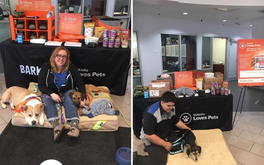 Annual Muller Subaru Loves Pets Adoption Event