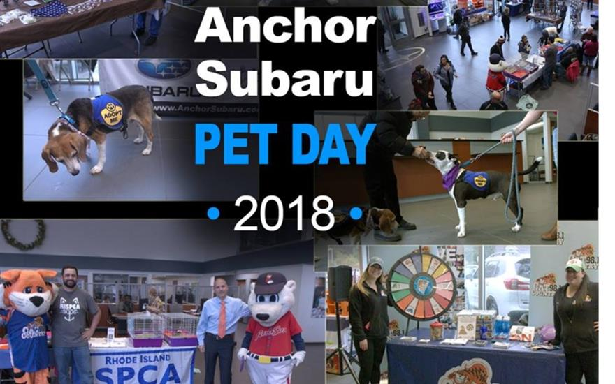Anchor Subaru Loves Pets - RISPCA Adoption Days