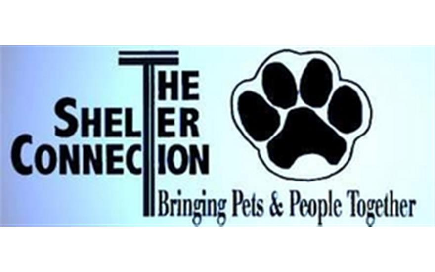 The Shelter Connection