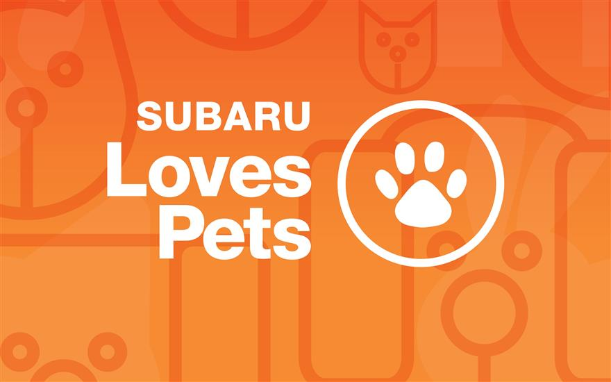 Stuckey Subaru Loves Our Local Animal Shelter!