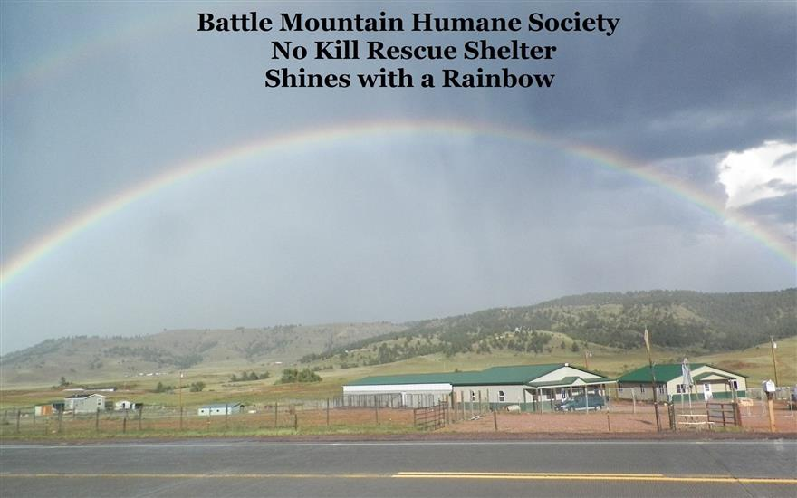 Share the Love with Battle Mountain Humane Society