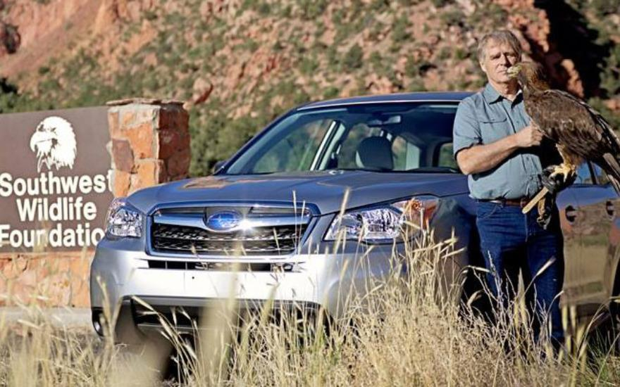 St. George Findlay Subaru helps save wildlife