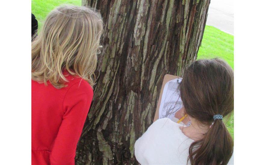 Nature Detectives - Kids Explore Outdoor World