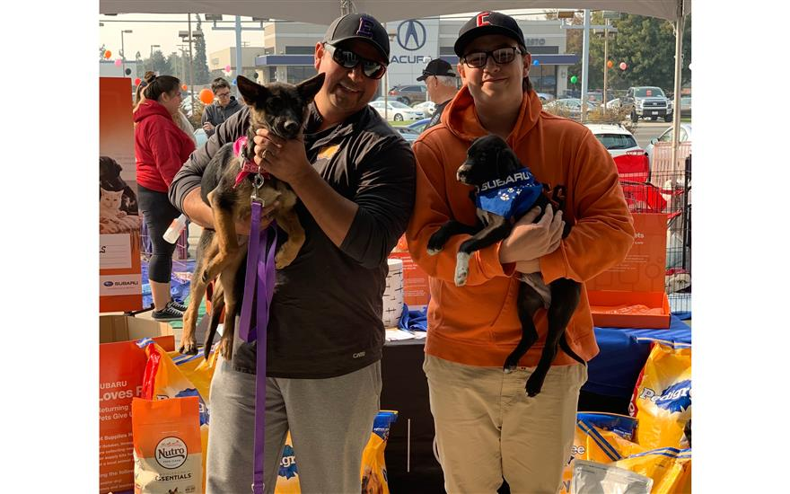 Four Legged Friends Get Love at Modesto Subaru