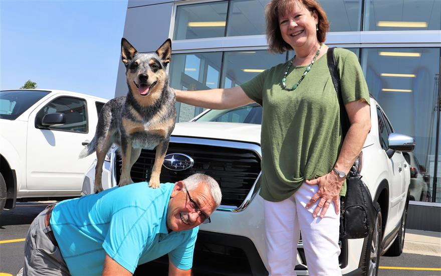 It's a Dog's World at Evanston Subaru