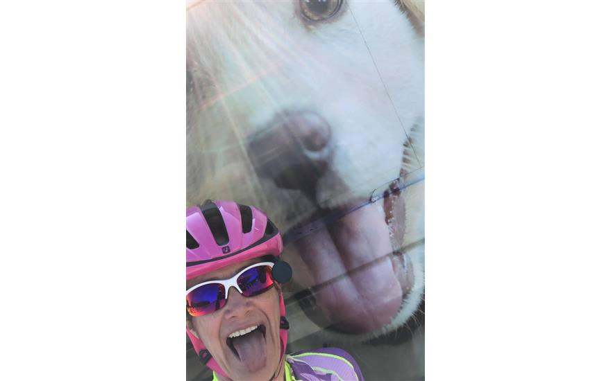 18th Annual Tour de Paws