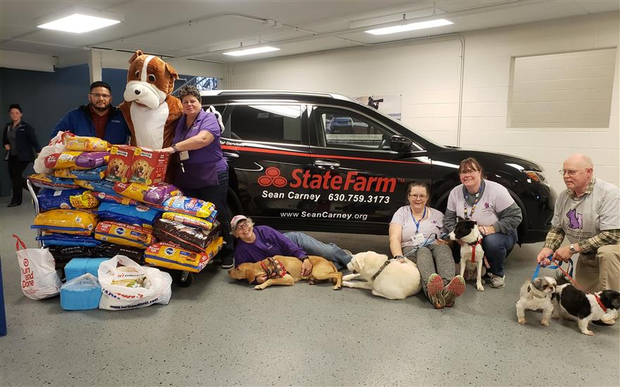 Grand Subaru Cares about Rescue Pets