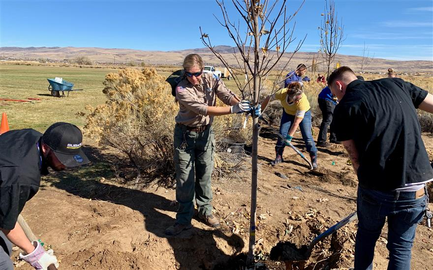 Over 20 trees donated to Lazy 5 Regional Park