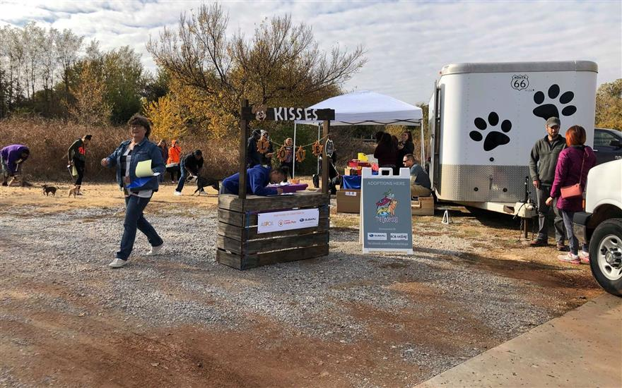 Subaru Loves Pets Free Vaccination Clinic