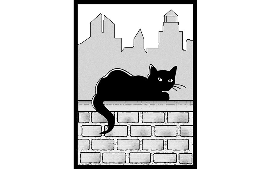 Greater New Haven Cat Project