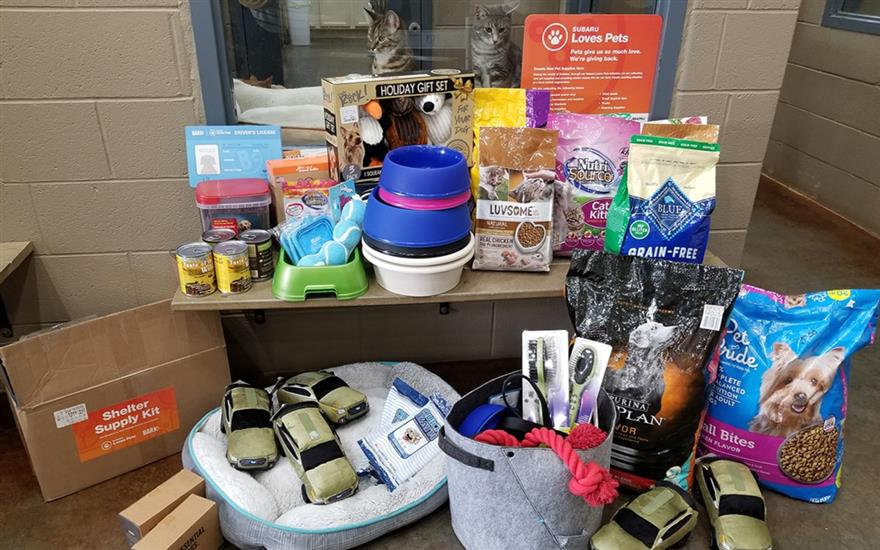Toys and Treats for Pets In Need