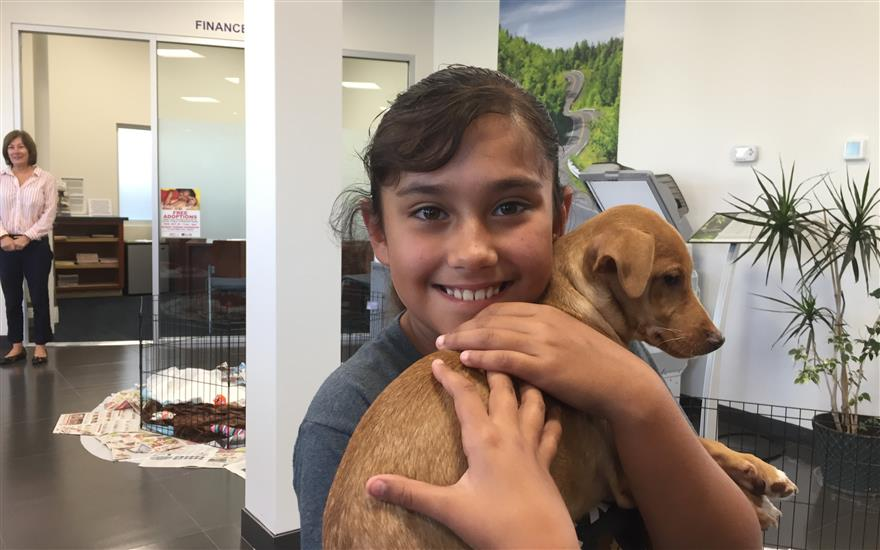 Albany Subaru Loves Pet's annual adoption day