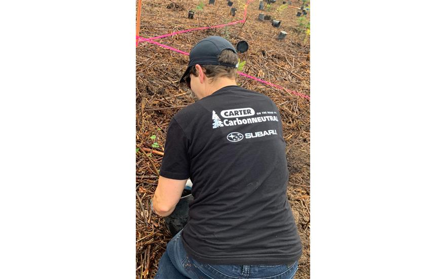 Planting 200,000+ trees with our community!