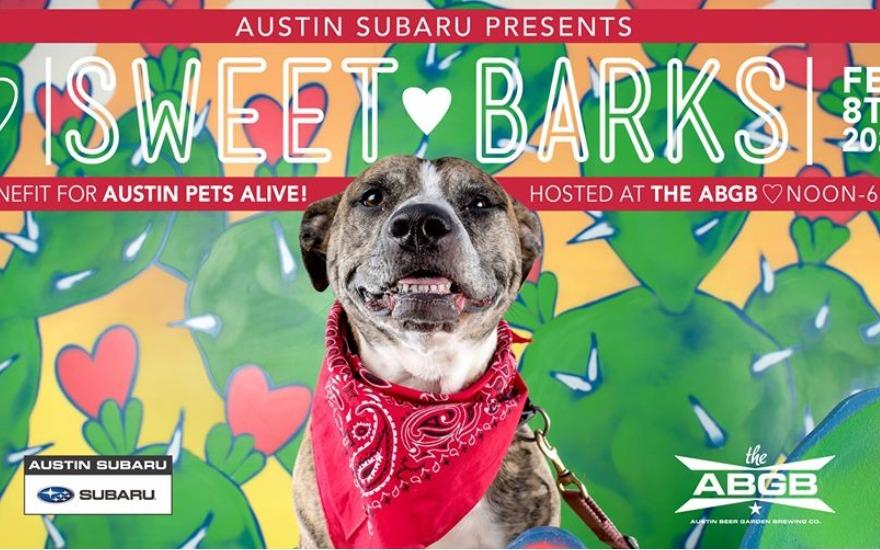 Austin Subaru Presents: Sweet Barks