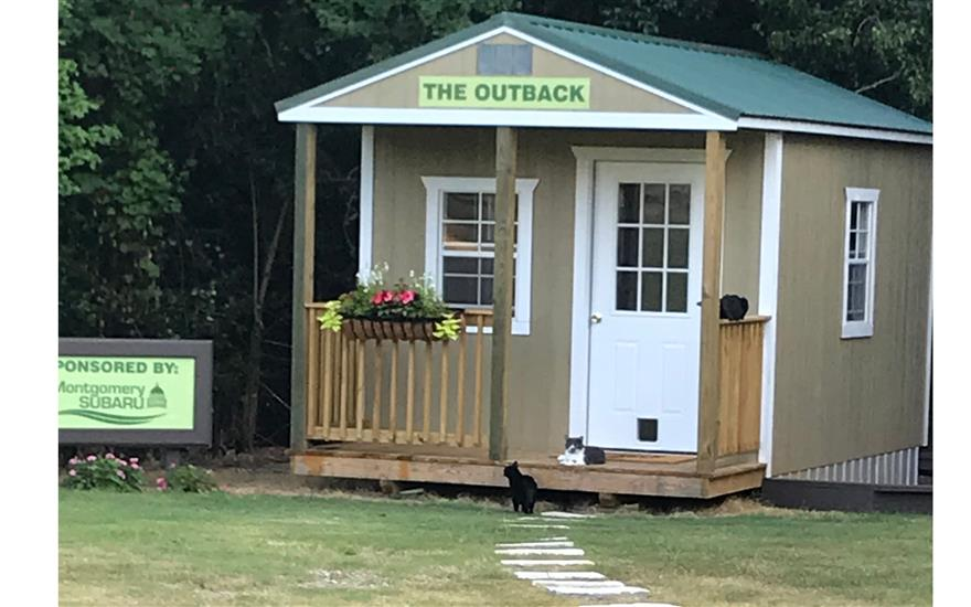 Shelter for our Feral Cats